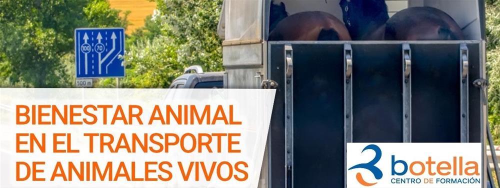 Cabecera curso BIENESTAR ANIMAL EN EL TRANSPORTE DE ANIMALES VIVOS