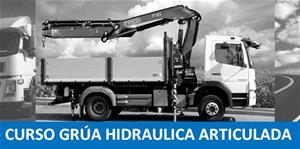 GRUA PLUMA (camión autocargante)